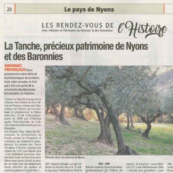 Article La Tribune - Olive de Nyons