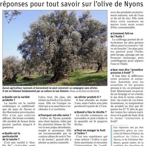 LDL article Olive de Nyons aout 2021